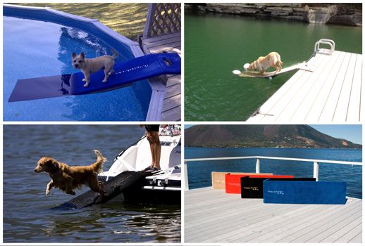doggydocks-for-all-sizes-and-breeds-on-all-types-of-boats-and-docks-and-..